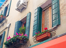 Sills. Windows with flowers in Venice, Italy Royalty Free Stock Images