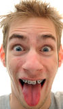 Silly man sticking tongue out Royalty Free Stock Photo