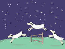 Silly sheep Stock Images