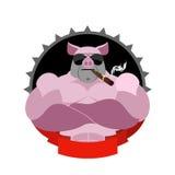 Silna świnia w szkłach z cygarem i Logo dla klubu sportowego Fa Zdjęcie Stock
