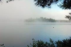 silna mgła obraz royalty free