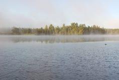 silna mgła obraz stock