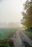 Silna mgła i wiejska droga zdjęcie royalty free