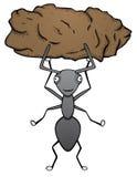 Silna mrówka Fotografia Stock