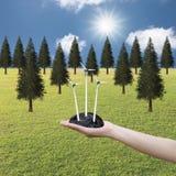 Silnik wiatrowy na ręce w świetnej pogodzie i sosna lesie Obraz Royalty Free