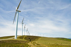 Silnik wiatrowy uprawiają ziemię (Baskijski kraj) Fotografia Royalty Free
