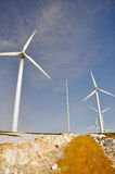 Silnik wiatrowy uprawiają ziemię w zimie Fotografia Royalty Free