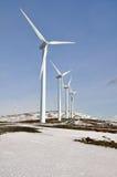 Silnik wiatrowy uprawiają ziemię w zimie (Baskijski kraj) Fotografia Royalty Free