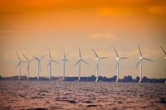 Silnika wiatrowego gospodarstwo rolne w morzu bałtyckim, Dani Zdjęcia Stock