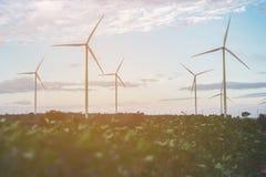 Silnika Wiatrowego gospodarstwo rolne, Wiatrowej energii pojęcie Obraz Stock
