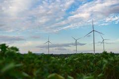 Silnika Wiatrowego gospodarstwo rolne, Wiatrowej energii pojęcie Fotografia Royalty Free