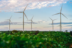 Silnika Wiatrowego gospodarstwo rolne, Wiatrowej energii pojęcie Zdjęcia Royalty Free