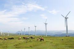 Silniki wiatrowi na wiatrowym gospodarstwie rolnym w Galicia, Hiszpania Fotografia Royalty Free