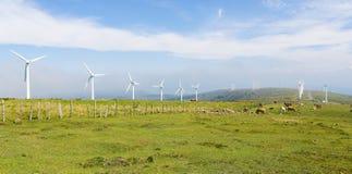 Silniki wiatrowi na wiatrowym gospodarstwie rolnym w Galicia, Hiszpania Zdjęcie Stock