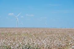 Silniki wiatrowi uprawiają ziemię na bawełny polu przy Corpus Christi, Teksas, usa Zdjęcia Royalty Free