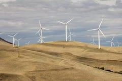 Silniki Wiatrowi w Goldendale Waszyngton krajobrazie Zdjęcie Stock