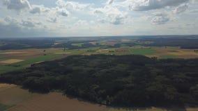 Silniki wiatrowi w kukurydzanych polach zdjęcie wideo