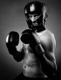 Silny agresywny bokser Obrazy Stock