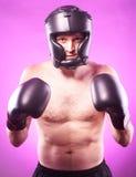 Silny agresywny bokser Obraz Royalty Free