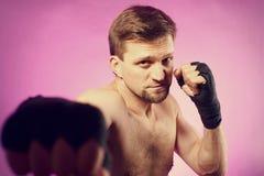 Silny agresywny bokser Zdjęcie Stock