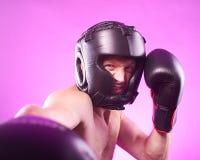 Silny agresywny bokser Fotografia Royalty Free