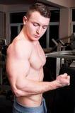 Silny ciało budowniczy napina bicepsy Zdjęcie Royalty Free