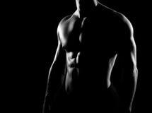 Silny, dysponowany i sporty bodybuilder mężczyzna w grayscale, Obraz Stock