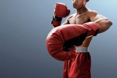 Silny mięśniowy bokser na szarym tle zdjęcia stock