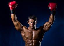 Silny mięśniowy bokser w czerwonych bokserskich rękawiczkach podnosił jego ręki abov Fotografia Stock