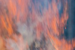 Silny ogień w lesie, dym, smog, burnt forestn fotografia royalty free