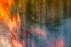 Silny ogień w lesie, dym, smog, burnt forestn zdjęcia stock