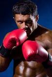 Silny sportowy mężczyzna z bokserskimi rękawiczkami na błękitnym tle Obraz Stock
