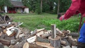 Silny wioska mężczyzna przygotowywa naturalnego drewna paliwo dla zimy w prowinci 4K zbiory wideo