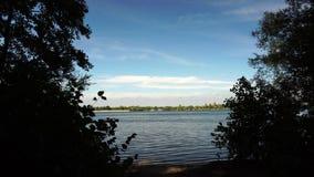 Silnych wiatrów ciosy na słonecznym dniu przy jeziorem zdjęcie wideo