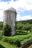 silo Photos stock