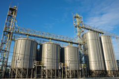 Silo in agricultural factory. Royalty Free Stock Image