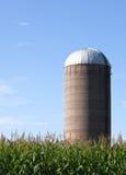 Silo auf einem Maisgebiet Stockfoto