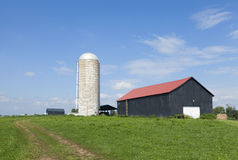 Silo and a barn Royalty Free Stock Image