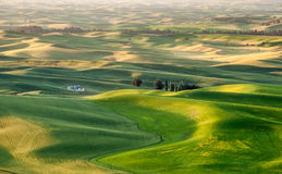 Silo in beautiful landscape of Palouse Stock Photography