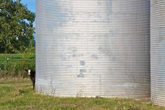 Silo With Cow Stock Images