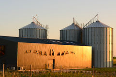 Silo del magazzino nell'agricoltura moderna Fotografia Stock Libera da Diritti