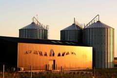 Silo del magazzino nell'agricoltura moderna Immagine Stock Libera da Diritti