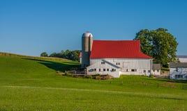 Silo e celeiro com o telhado vermelho perto do prado verde foto de stock