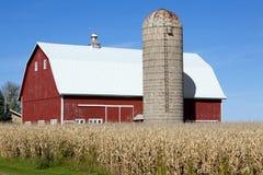 silo för red för ladugårdhavrefält Royaltyfria Foton