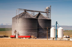 Silo Loads Semi Truck Farm Grown Food Grain Stock Photography