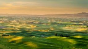 Silo nel bello paesaggio di Palouse durante l'alba Fotografie Stock