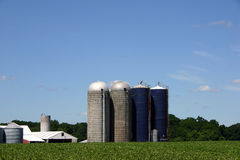 Silo - New Jersey Farm. Silo and outbuildings on a vegetable farm in New Jersey Stock Photo