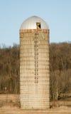 Silo op het Landbouwbedrijf Stock Afbeelding