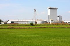 Silo on rice field, Thailand. Stock Images