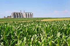 silo's Royalty-vrije Stock Foto